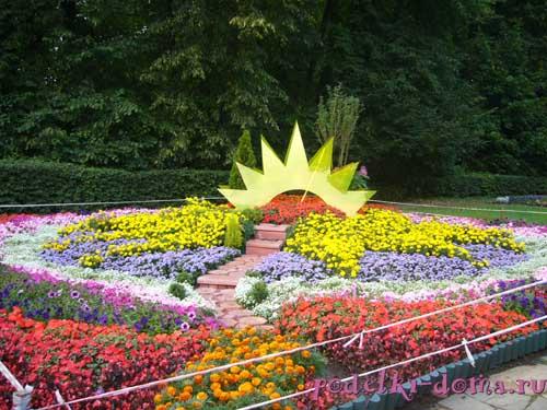 Vi фестиваль цветников и все фотографии альбома