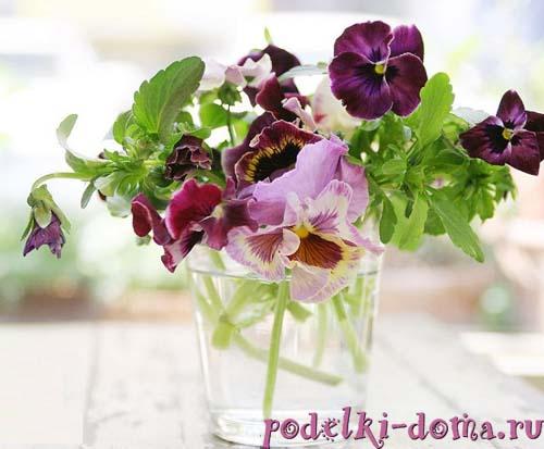 cvety akvarel1