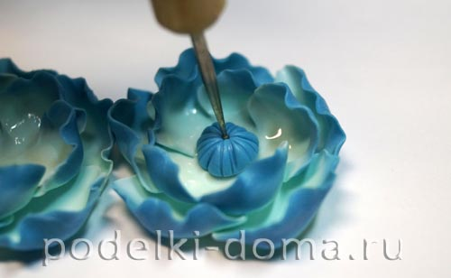 biruzovye cvety18