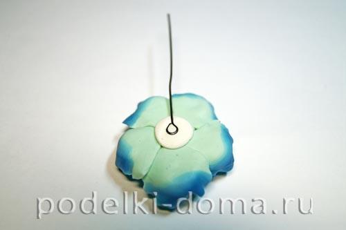 biruzovye cvety21