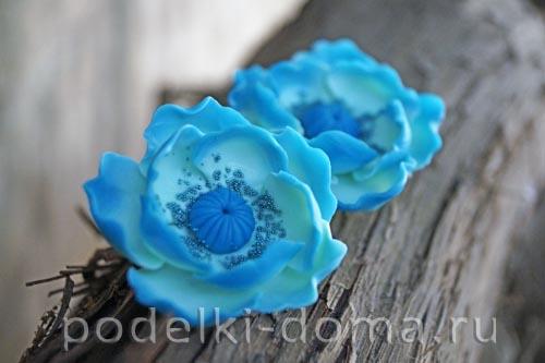 biruzovye cvety27