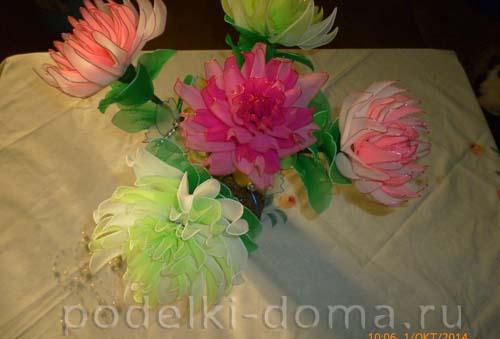 cvetok iz kaprona - hrizantemy