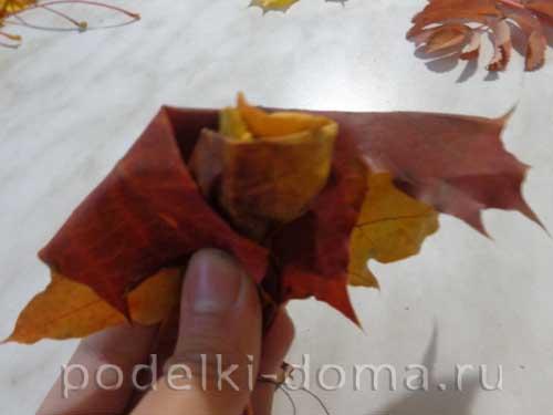 rozy iz klenovyh listyev8
