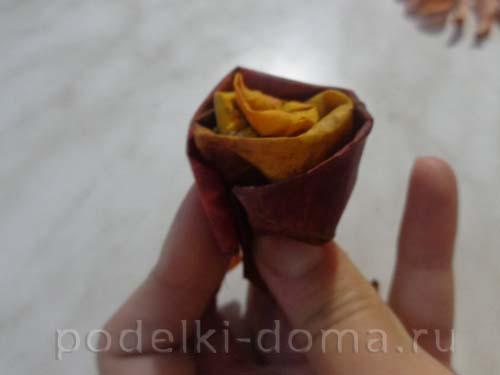 rozy iz klenovyh listyev9