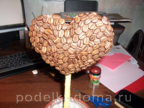 topiariy serdce kofeynoe14