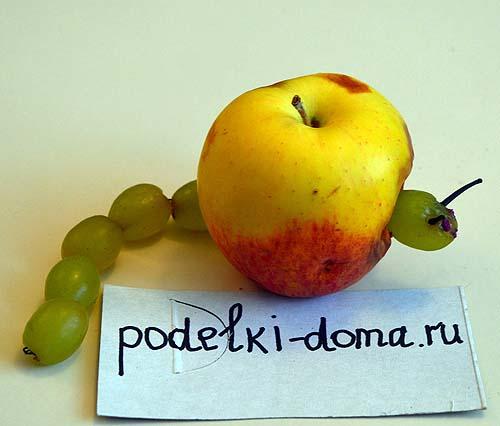Domik-dlya-gusenitsyi-iz yabloka i vinograda