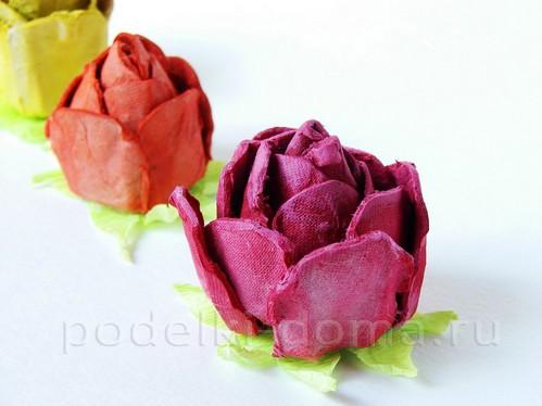 rozy iz lotkov38