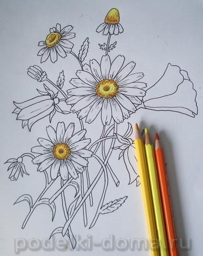 risuem cvety11