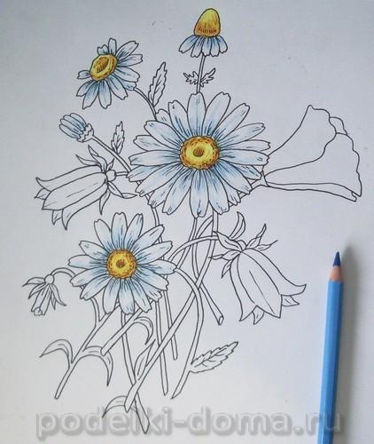 risuem cvety12