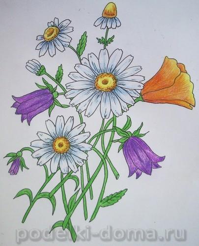 risuem cvety16