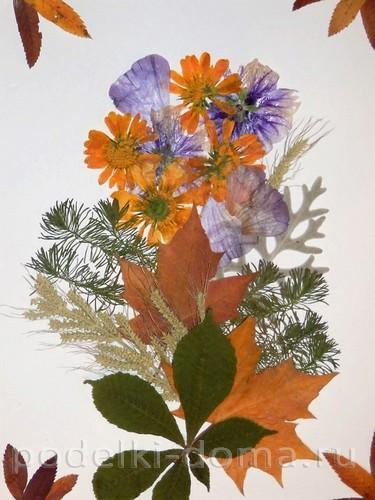 Цветкова Анастасия