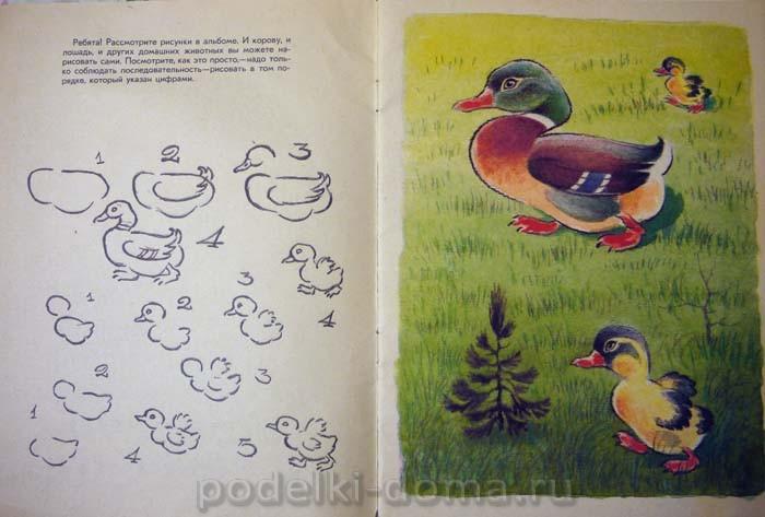 Как нарисовать  утку и утенка