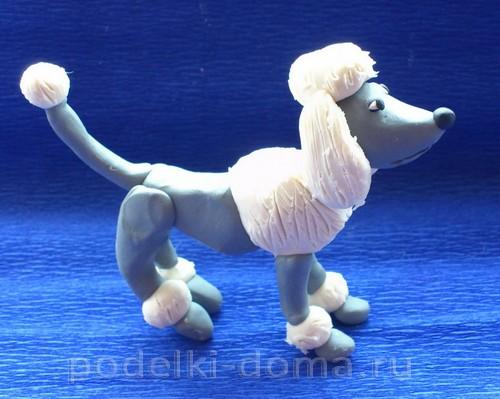 собачка пудель из пластилина12