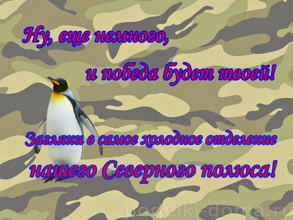 квест ДР мужчины07