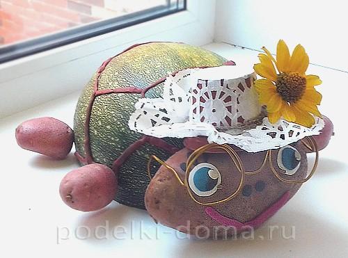 черепаха Тортила тыква, картофель