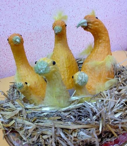 птицы из кабачков