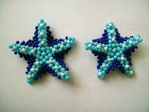 morskaya zvezda10