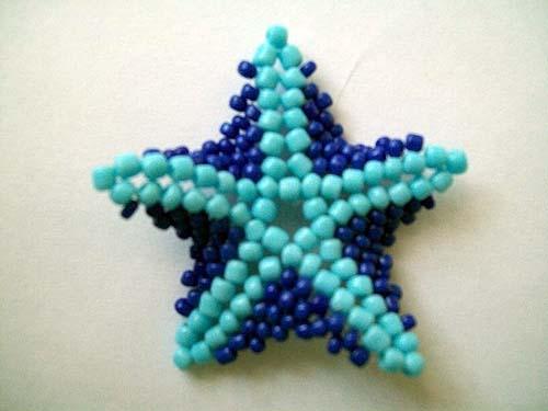 morskaya zvezda9