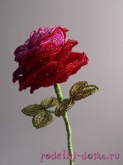 roza iz bisera2