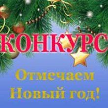 Итоги конкурса «Как отметить Новый год»!