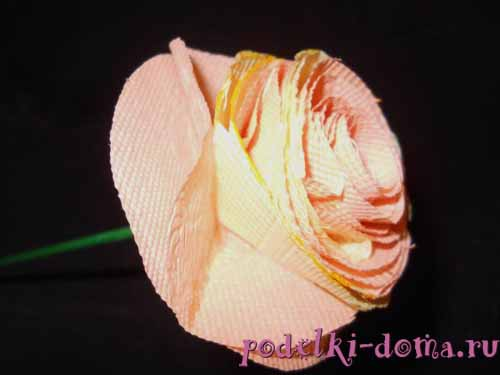 rozy iz bumagi15