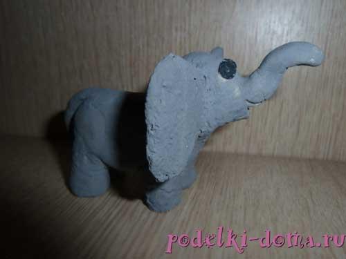 slon iz testa