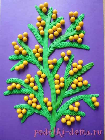 mimoza5