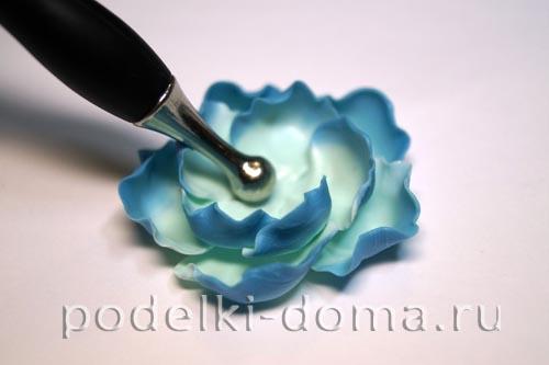 biruzovye cvety14