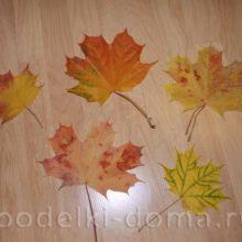 Как сохранить осенние листья — 4 варианта