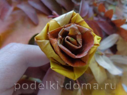 rozy iz klenovyh listyev6