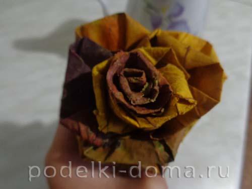 rozy iz klenovyh listyev7