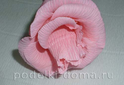 rozy iz konfet20