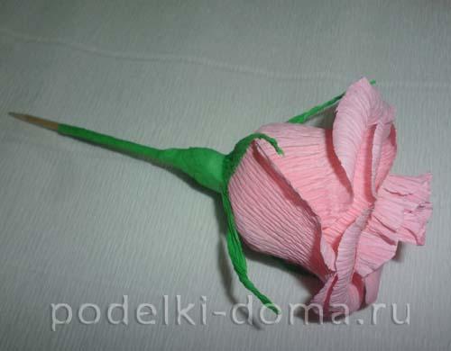 rozy iz konfet24