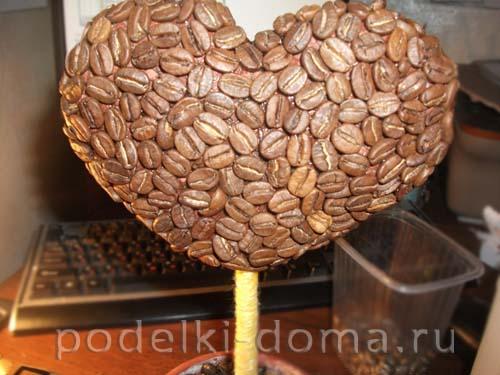 topiariy serdce kofeynoe16