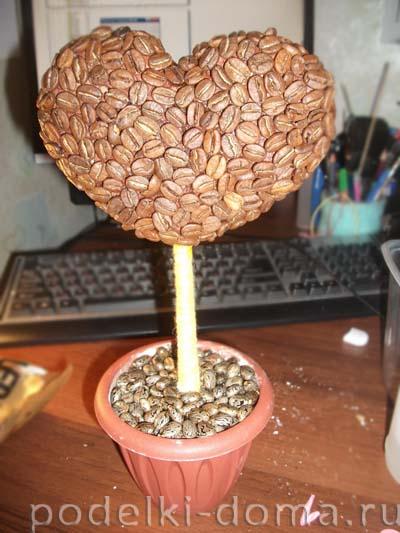 topiariy serdce kofeynoe18