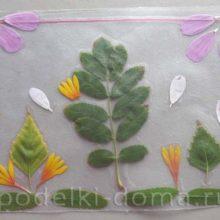 Осенняя аппликация из цветов и листьев