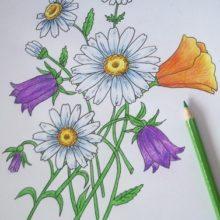 Как нарисовать цветы (поэтапно)