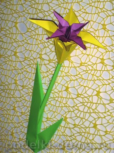 iris iz bumagi origami27