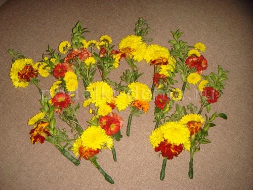Композиции из живых цветов