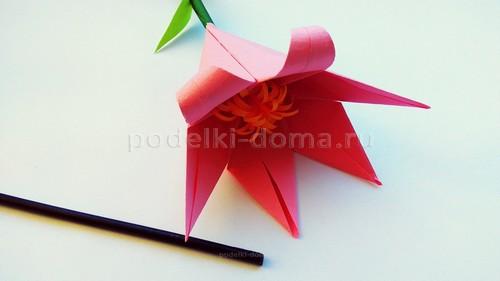 Бумажные цветы - 3 варианта