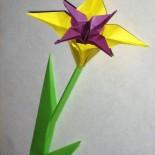 Ирис в подарок (оригами)