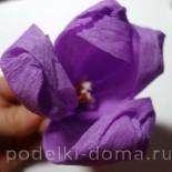 Крокусы — цветы из гофрированной бумаги